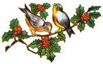 christmas-holly-4