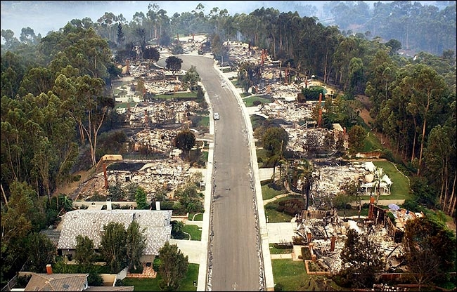 Scripps Ranch fire, San Diego, 2003.  All the homes burned, but the eucalypts that surrounded them did not catch fire.  New York Times