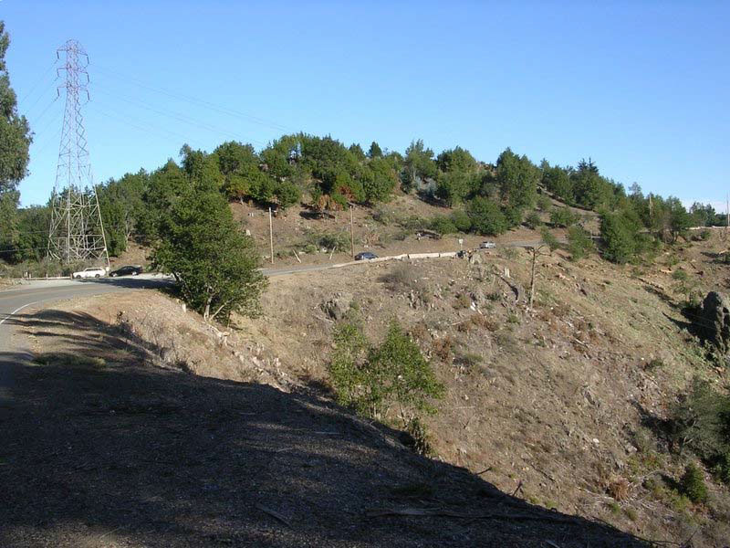 Frowning Ridge after 1,900 trees were removed from 11 acres in 2004