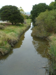 Cerritos Creek