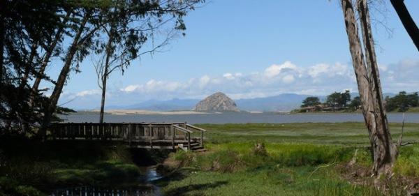 Sweet Springs Nature Preserve, Los Osos, California