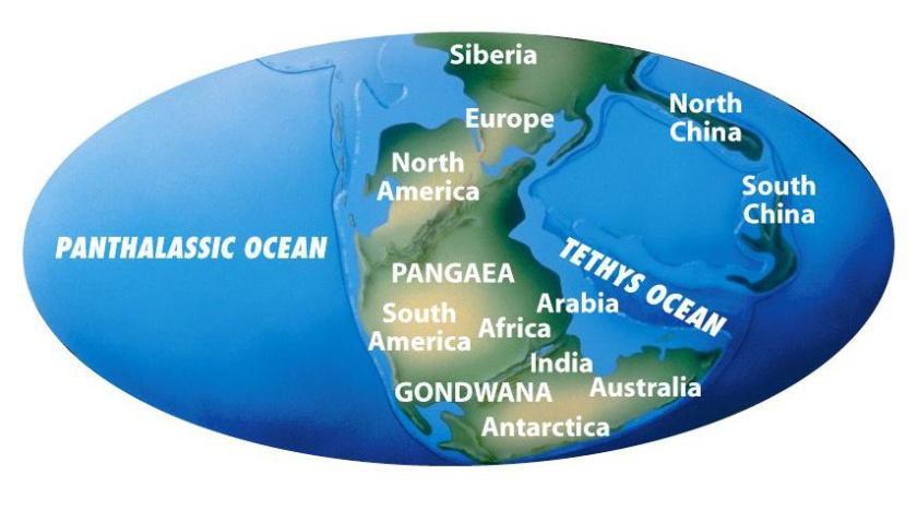 Pangea0001