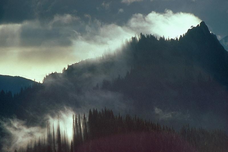 Olympic National Park.  NPS photo