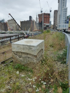 Self-Seeded landscape of Phase 3 of High Line Park