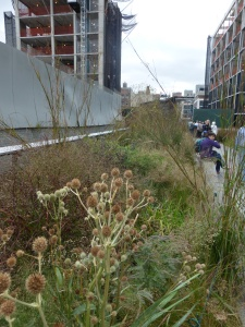 Landscape of first phase of High Line Park