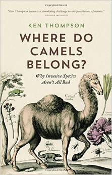 Where do camels belong