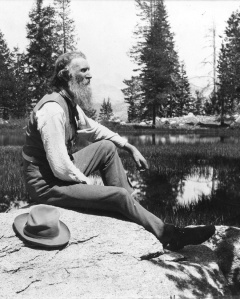 John Muir is the founder of the Sierra Club. He would disgusted by the Club's advocacy for deforestation. He planted eucalyptus trees on his property in Martinez. He was as fond of eucalyptus as those who fight for their preservation.