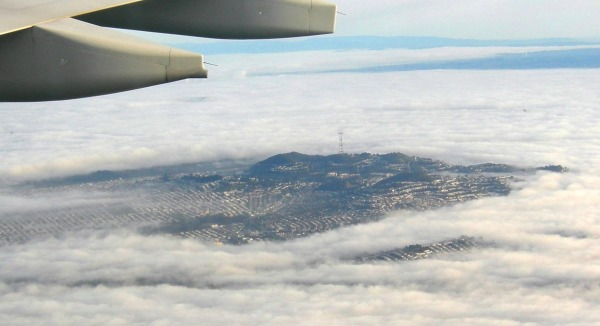 The Bay Area is often blanketed in fog. Courtesy Save Mount Sutro Forest.