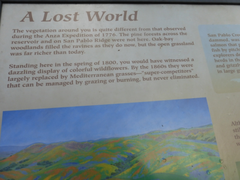 Sign at Inspiration Point, Tilden Park:
