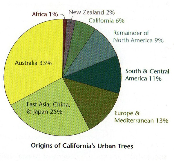 urban-trees-origins